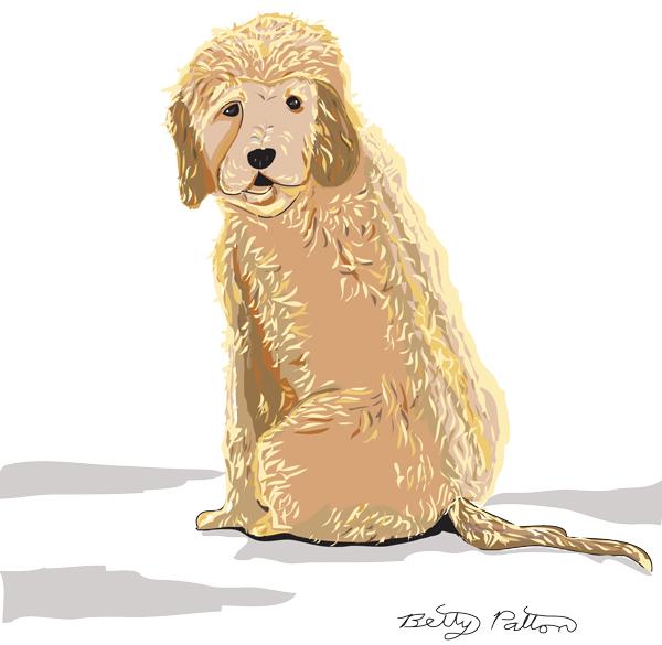 Dogabbie